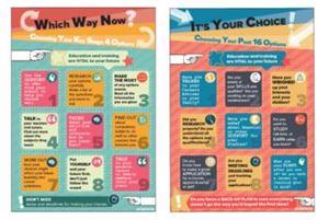 Picture of Which Way Now? and It's Your Choice Poster Set of 2