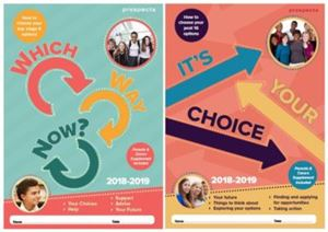Picture of Which Way Now & It's Your Choice 2018/19: 2 PDF Bundle