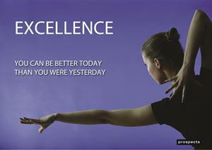 Picture of Excellence Poster