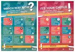 Picture of Which Way Now? &  It's Your Choice Posters Set of 2 2020-21