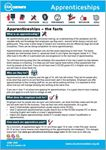 Picture of Apprenticeships in… PDF 2020-2021