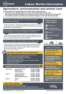Picture of Labour Market Information posters PDF 2021